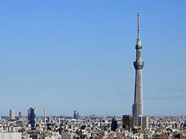 TOKYO SKYTREE® Tembo Deck and Asakusa Tour, Tokyo