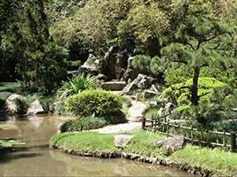 Botanical Garden of Rio de Janeiro, Rio de Janeiro