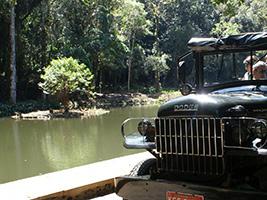 Rainforest jeep tour with botanical garden, Rio de Janeiro