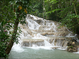 Dunn's River Falls and 9 Miles, Montego Bay (and vicinity)