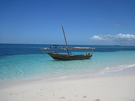 Safari Blue: Day of Aquatic Activities, Zanzibar