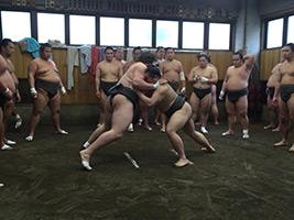 Watch Sumo Practice at Sumo Stable in Tokyo, Tokyo