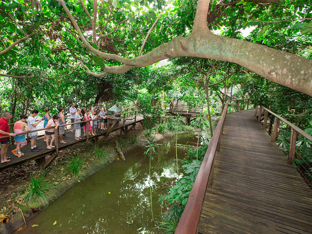 Pass Cairns Multi Attractions