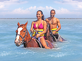 Zipline, White Water Raffting and Swim with the Horses, Montego Bay (and vicinity)