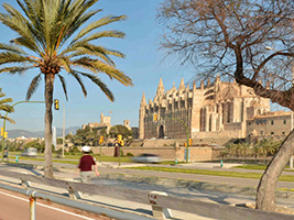 Palma City Xperience with Cathedral, Majorca