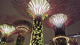 Nightout Marina Bay, Singapore