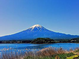 Mt. Fuji and Lake Kawaguchi 1 Day Bus Tour, Tokyo