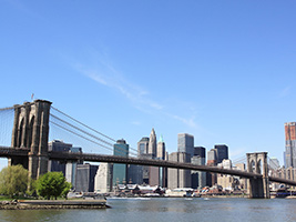 Brooklyn Bridge Walking Tour, New York Area - NY