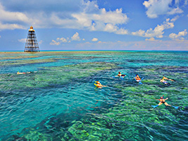Key West Tour with Catamaran and Snorkel Trip, Miami Area - FL