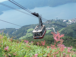Mount Fuji and Hakone Full Day Tour, Tokyo