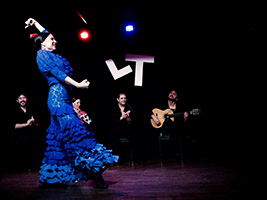 Tablao Flamenco Show