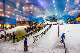 Ski Dubai with Transfers, Dubai