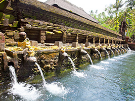 Half Day Fascinating Ubud and Tampak Siring - Private, Bali
