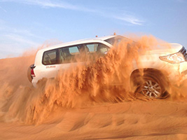 Arabian Desert Dunes Safari with Dinner, Dubai