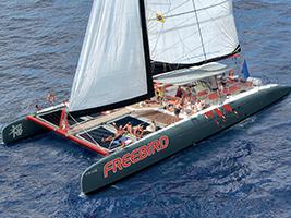 Freebird Catamaran - Direct, Tenerife