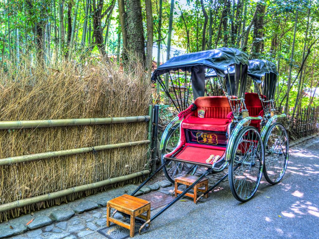 Kyoto, Nara And Kobe Day Tour: Arashiyama, Nara Park And