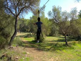 Entrada Forestal Park Mallorca