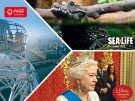London Big Ticket: London Eye + Sea Life London + Madame Tussauds, London