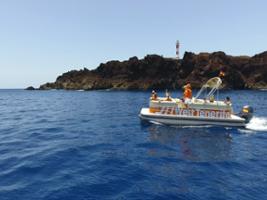 West Tenerife - Water Activities Tour, Tenerife