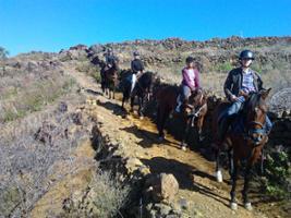 Horse Riding, Tenerife