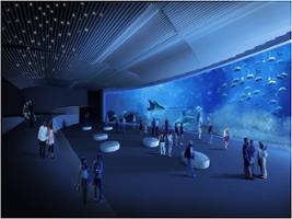 Poema del mar aquarium excurs es em gran canaria for Aquarium poema del mar