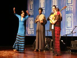 Flamenco Show at Casa Patas, Madrid