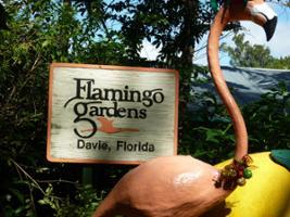 South Florida Sightseeing Flex Pass, Miami Area - FL