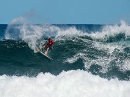 Godzilla Surf School in El Medano, Tenerife