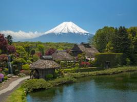Full Day World Heritage Mt. Fuji Golden Tour, Tokyo