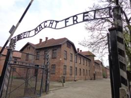 Auschwitz Birkenau Tour with Dinner and a Concert in a Jewish Cafe, Krakow