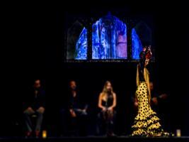 Entrada Teatro Flamenco