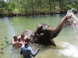 Full Day Elephant Seaside Retreat With Bamboo Rafting, Khao Lak and Phang Nga