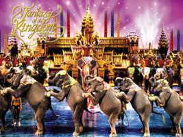 FantaSea Show - with Dinner, Phuket