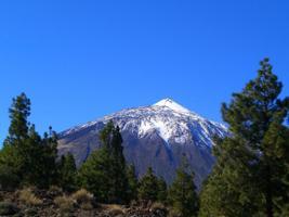 Mountain Tour of Teide, Tenerife