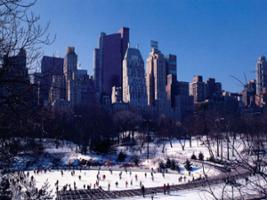 Central Park Ice Skating + Big Bus Classic, New York Area - NY
