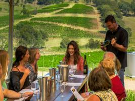 Tastings in the Hunter Valley Deluxe Tour, Sydney - NSW