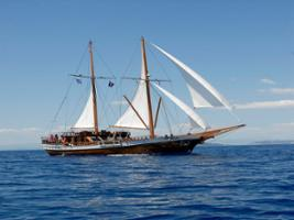 1 Day Cruise 3 Islands to Agistri, Moni and Aegina - Semi-Private, Athens