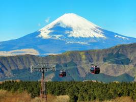 Mt.Fuji and Hakone 1 Day Bus Tour from Tokyo, Tokyo