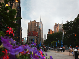 New York Comprehensive Tour, New York Area - NY