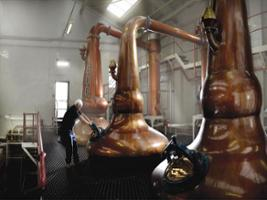 Discover Malt Whisky, Edinburgh
