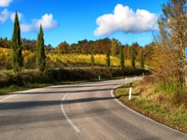 Chianti's Colours and Flavours - Half Day Tour, Florence