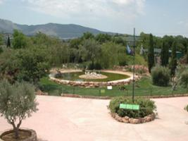 Attica Zoological Park - Private Visit, Athens