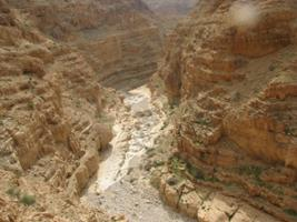 Desert Safari - Private Tour from Tel Aviv, Tel Aviv