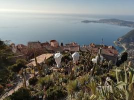 Morning Tour to Monaco Monte-Carlo and Eze from Nice, Nice