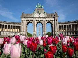 Brussels City Tour + Walking Tour: Sweet and Spicy, Brussels
