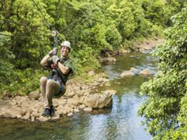 Braulio Carrillo Park: Canopy Tour with transfer from San Jose, San José / Central Valley