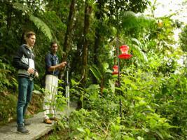 Braulio Carrillo Park: Birding Tour with transfer from San Jose, San José / Central Valley