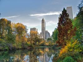 Central Park Walking Tour, New York Area - NY