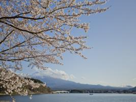 Mont Fuji - Day Tour with Kawaguchiko Lake and Gotemba Outlets, Tokyo