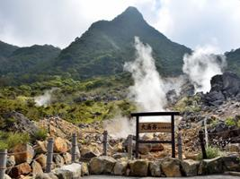 Hakone Fuji Day Tour: Cruise, Cable Car, and Volcano, Tokyo